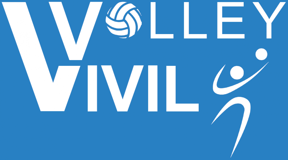 Vivilvolley logo